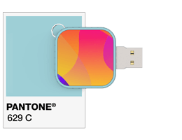 Referencias de Pantone® Flash Drive