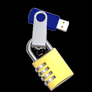 WalletStick Bloqueo de archivos/Dual Zone